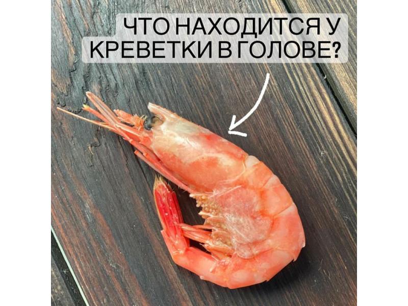 Что находится у креветки в голове?